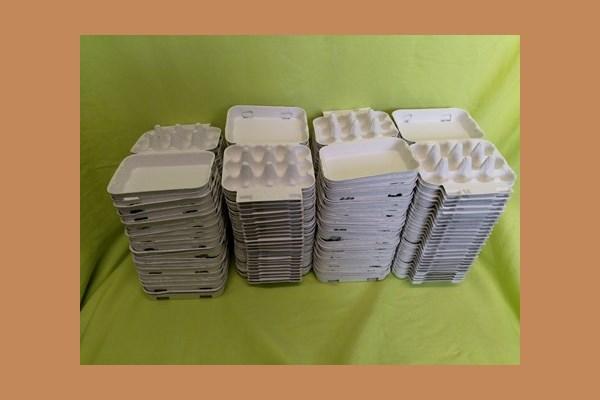 12-er Wachtel Eierkarton 100 Stück 600011