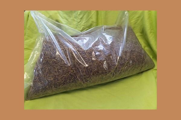 Mehlwürmer, getrocknet (1 Beutel à 5 kg) 140120